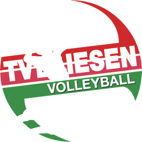 www.tvbliesen-volleyball.de